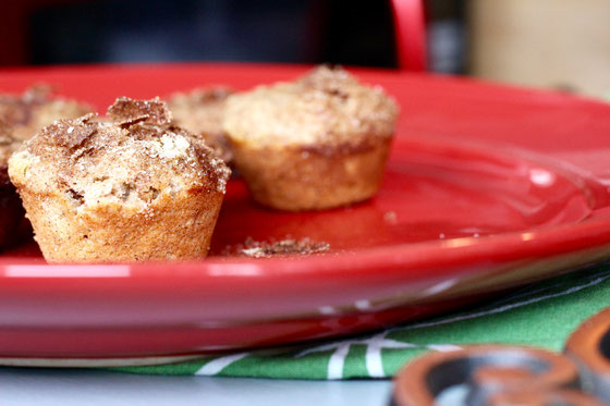 Amy Gorin-Cinnamon Spice Muffin.png